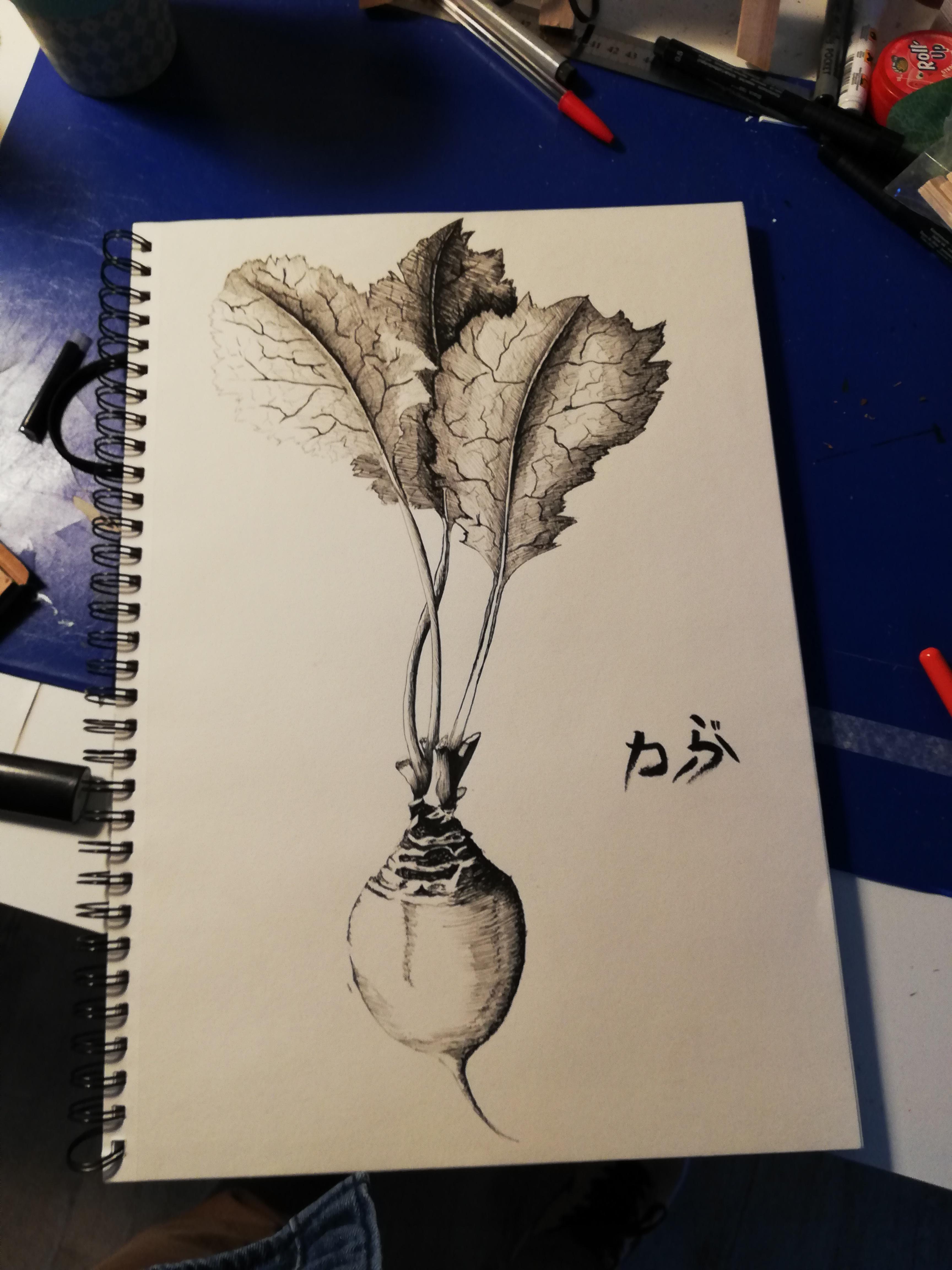 yamashita_dessin